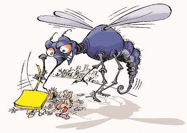 शहर में छाया डेंगू का खौफ,महिला की मौत