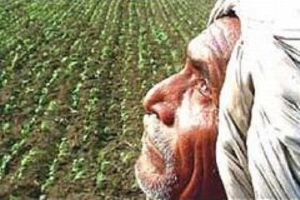 सहकारिता व खेतीबाड़ी विभाग में कई पद खाली, किसान परेशान