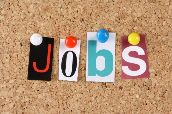 10वीं पास के लिए सरकारी नौकरी पाने का मौका, मिलेगी 20000 सैलरी