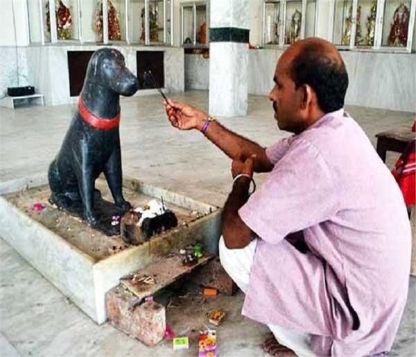आखिर क्यों इस मंदिर में होती है कुत्ते की पूजा ?