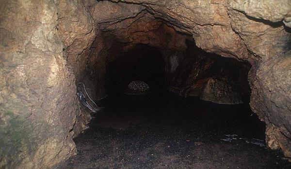 किन्नर कैलाश यात्रा पर निकला, गुफा में मिली अधजली लाश