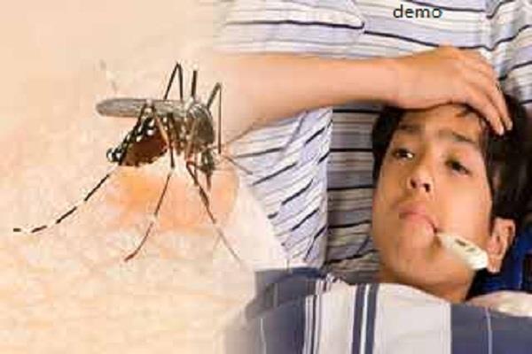 नवांशहर में मिले डेंगू के 2 मरीज