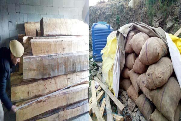 पेड़ कटान मामला : आरोपी से 286 स्लीपर व 33 कोयले की बोरियां बरामद