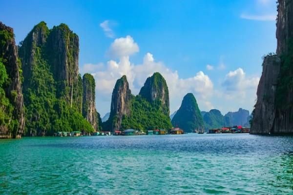 कम्बोडिया: समुद्र तल से 1 हजार मीटर की ऊंचाई पर स्थित है पर्वतीय देवदार जंगल