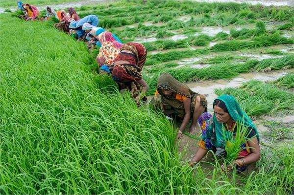 जलवायु परिवर्तन के दुष्प्रभावों से घट सकती है कृषि आय