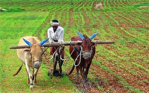 पशुओं से होने वाले नुकसान को कृषि बीमा योजना के तहत लाने का कोई नहीं प्रस्ताव: सरकार