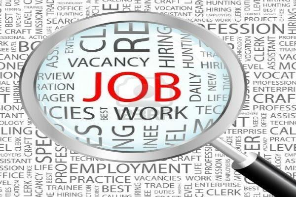 इस विभाग में निकली है 2600 से ज्यादा सरकारी नौकरियां, एेसे करें आवेदन