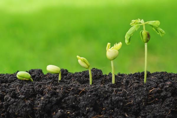 बजट 2018: कृषि अनुसंधान बजट में बढ़ौतरी कर सकती है सरकार