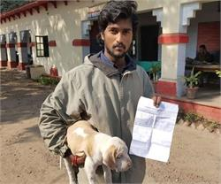ट्रेन में बिना टिकट सफर कर रहा था कुत्ता, रेलवे ने ठोका जुर्माना