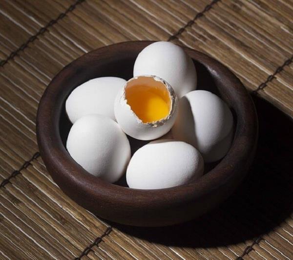 तेज दिमाग वाला बच्चा चाहिए तो डाइट में खाएं अंडा