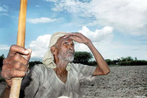हिमाचल में सूखे से कृषि उपज को 96 करोड़ का नुक्सान, किसान परेशान