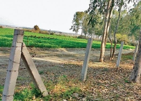 अनोखी मिसाल: गांववासियों ने 500 बीघा जमीन में लगा ली कंटीली तार