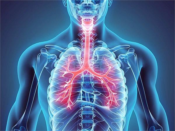 सांस की बीमारियों का कारण बन सकती है शरीर में जिंक की कमी