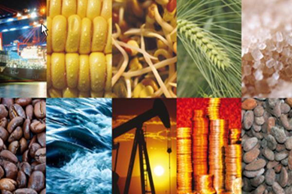 अधिकतर खाद्य तेल, चना, चीनी, गुड़, गेहूं नरम