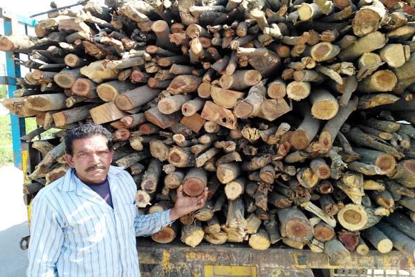 चैक पोस्ट पर लकड़ी से भरी टैक्टर ट्राली जब्त, वन विभाग ने की कार्रवाई