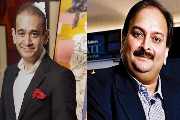 PNB Scam: नीरव-मेहुल के खिलाफ जल्द रेड कॉर्नर नोटिस संभव, ED ने की मांग