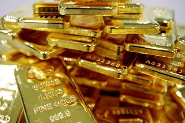 श्रीलंका से तस्करी कर लाया गया 23 किलो सोना पकड़ा