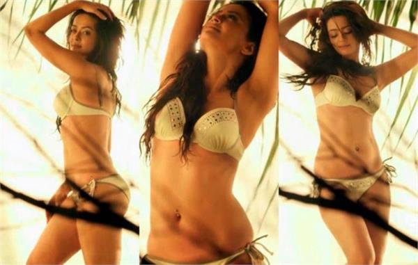 surveen chawla said her hasband has no issue with hot scenes