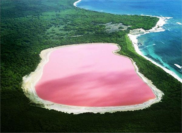 दुनिया की सबसे अनोखी ''गुलाबी झील'', आप भी लें तैराकी का मजा