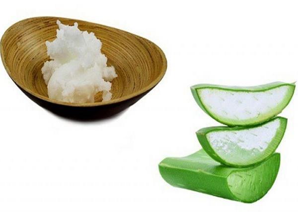 यूं बनाएं एलोवेरा और नारियल तेल का पेस्ट,  मिलेगा बेदाग चेहरा
