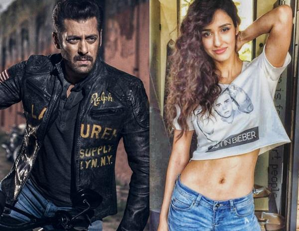 disha patani to work with salman khan in bharat