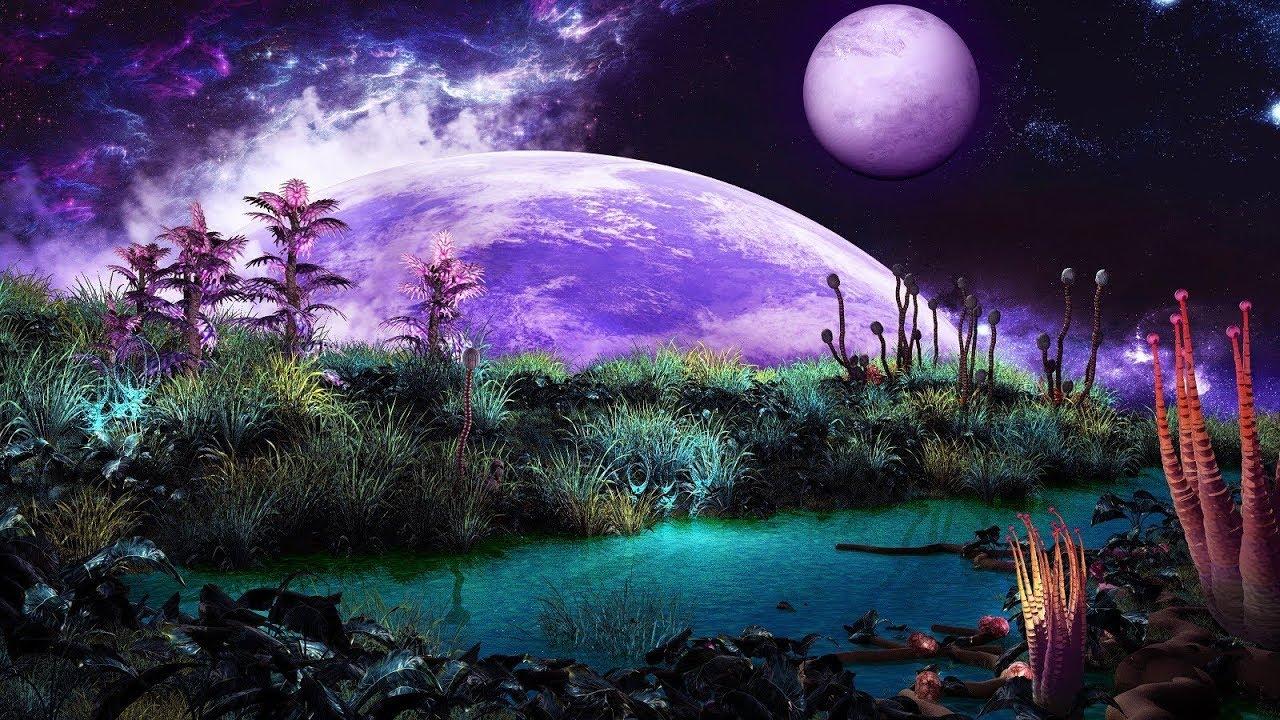 PunjabKesari planets and plants