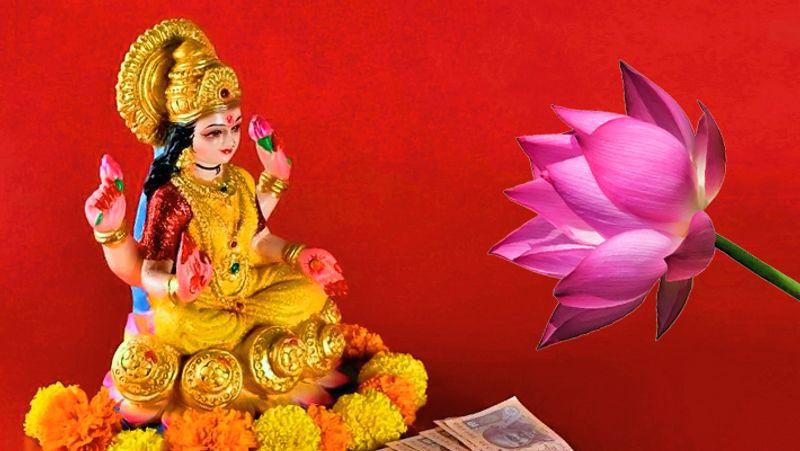 PunjabKesari Lakshmi kamal
