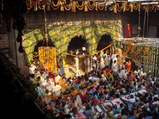 PunjabKesari banke bihari temple