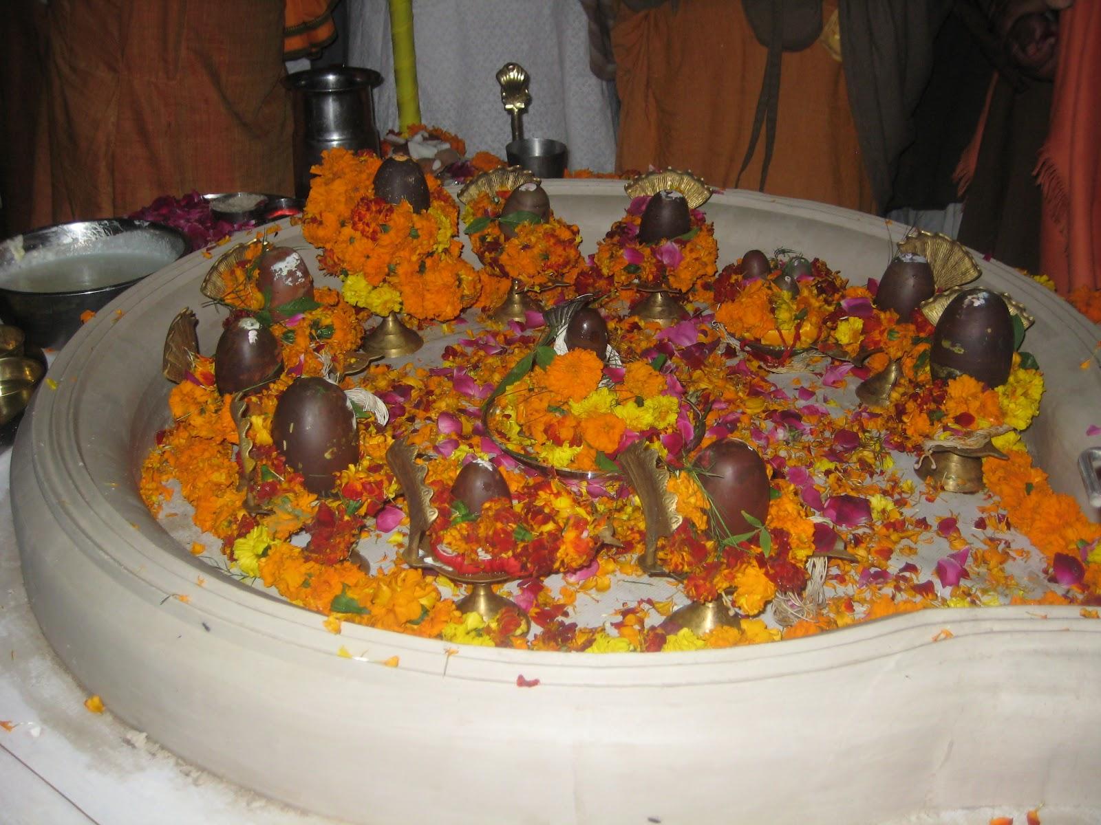 PunjabKesari shivling