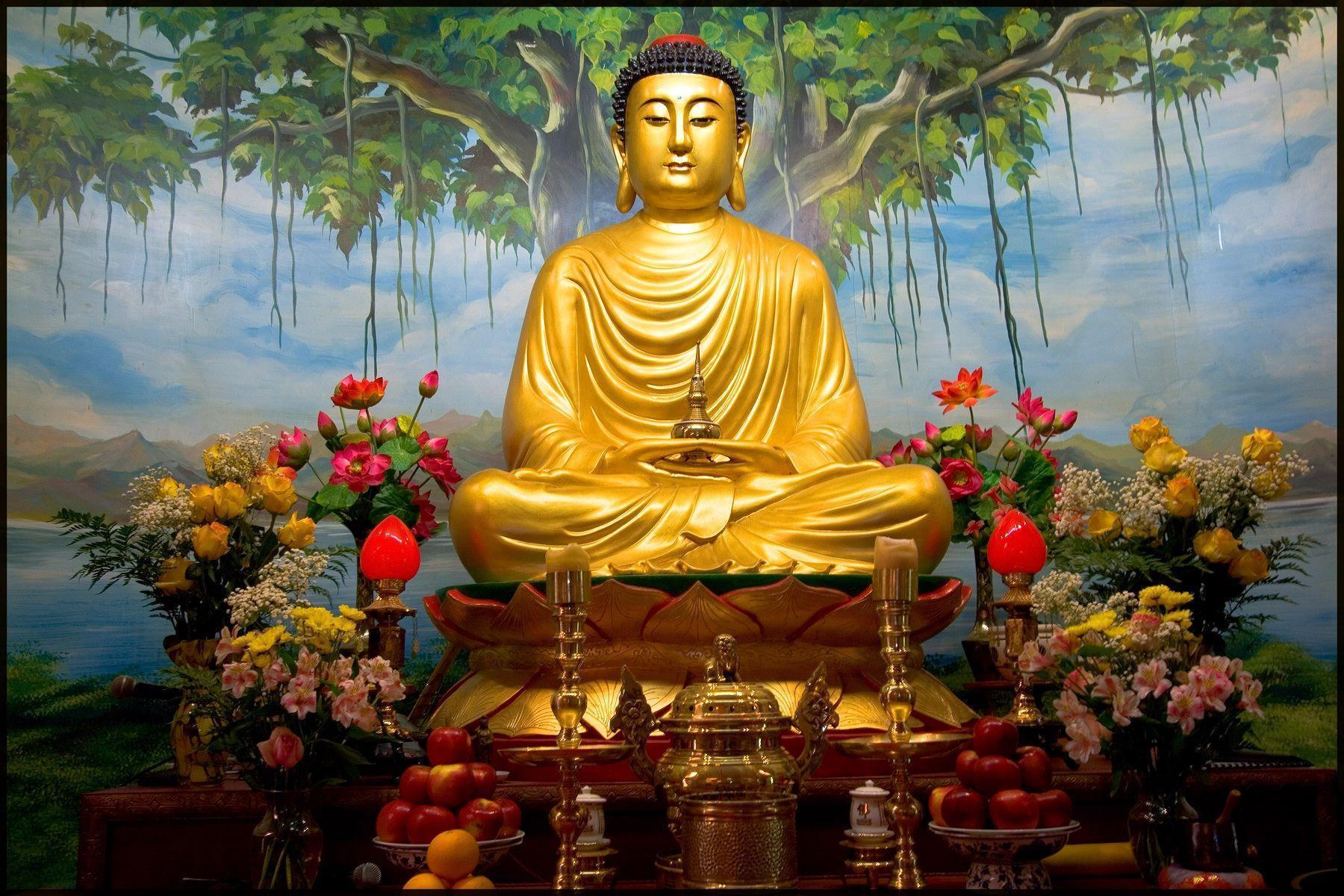 PunjabKesari Gautama Buddha Religious Katha