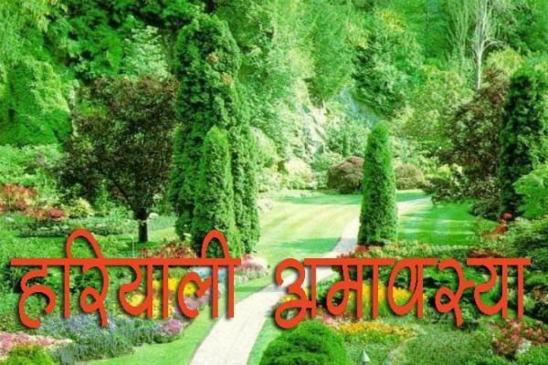PunjabKesari Hariyali Amavasya 2020