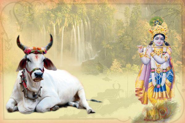 PunjabKesari Sri Krishna Janmashtami