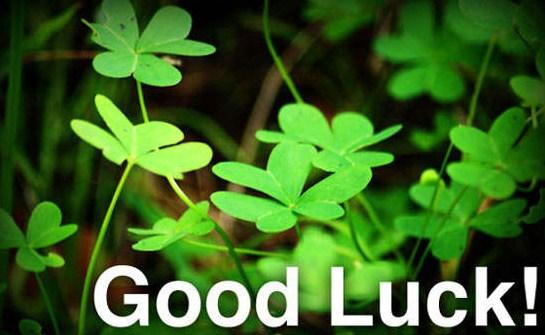 PunjabKesari These signs bring good luck in your life