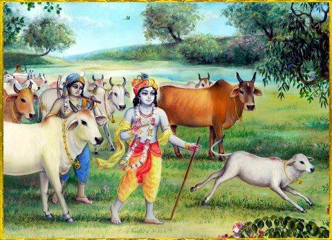PunjabKesari Bahula Chaturthi vrat