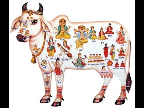 PunjabKesari Anmol vichar
