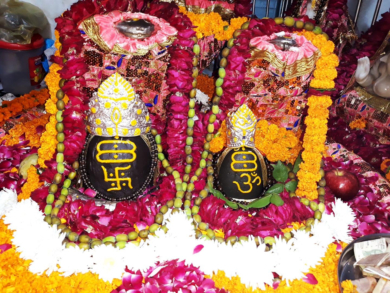 PunjabKesari Achleshwar Dham Batala