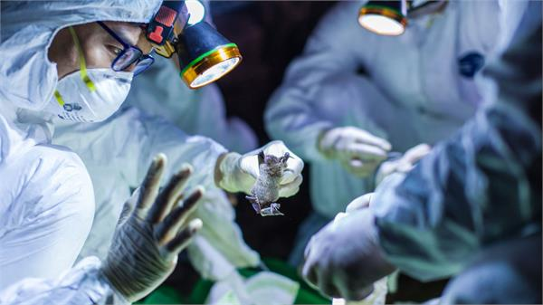 corona virus discovery of cu to remove ventilator deficiency in the country