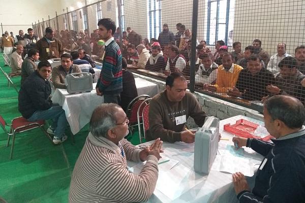 PunjabKesari, jind lection