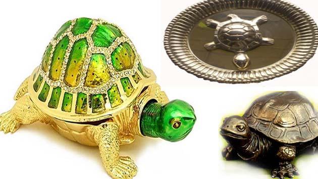 PunjabKesari, Tortoise related to vastu