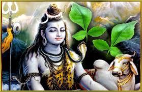 PunjabKesari Shravan month