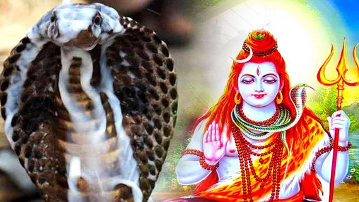 PunjabKesari, kundli tv, Nag Panchami, नाग देवता, lord shiva, नाग पंचमी