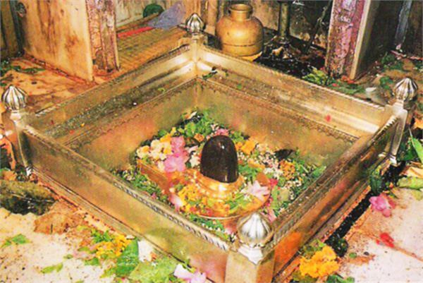 the door of baba kashi vishwanath will open from june 8