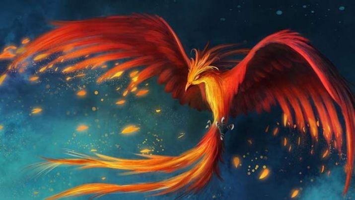PunjabKesari, kundli tv, phoenix bird image