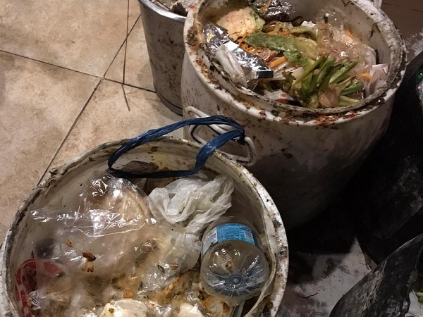 PunjabKesari, wet and dry waste separately