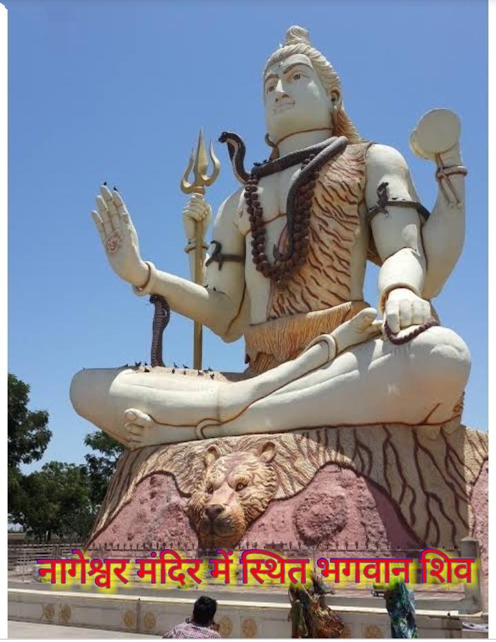 PunjabKesariPunjabKesari, Nageshwar jyotirlinga, नागेश्वर ज्योतिर्लिंग, kundli tv