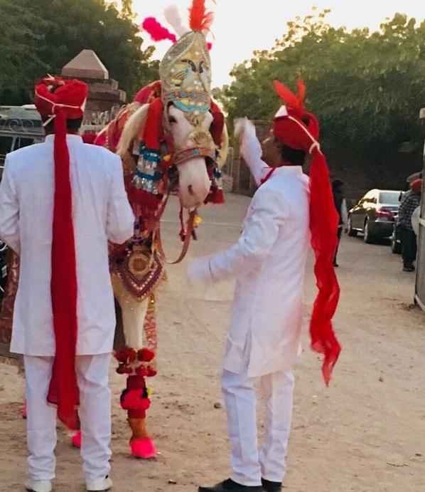 PunjabKesari,priyanka chopra image , nick jonas image, royal look image, hindu marriage image,  barat image