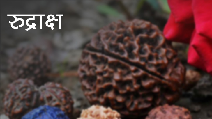 PunjabKesari Health benefits of rudraksh
