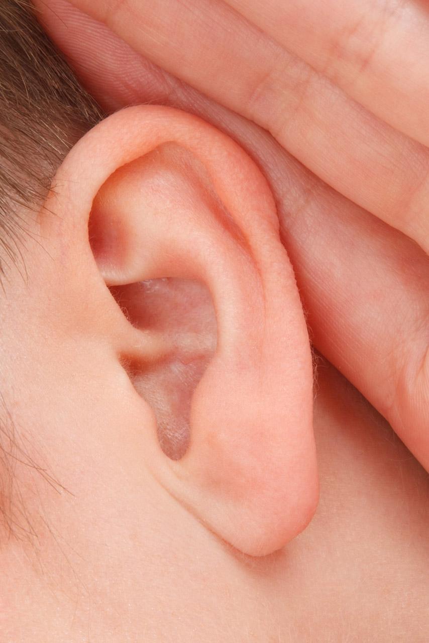 PunjabKesari, सामुद्रिक शास्त्र, कान की बनावट, Samudrik Shastra, Shape Of Ear, Numerology, Palmistry