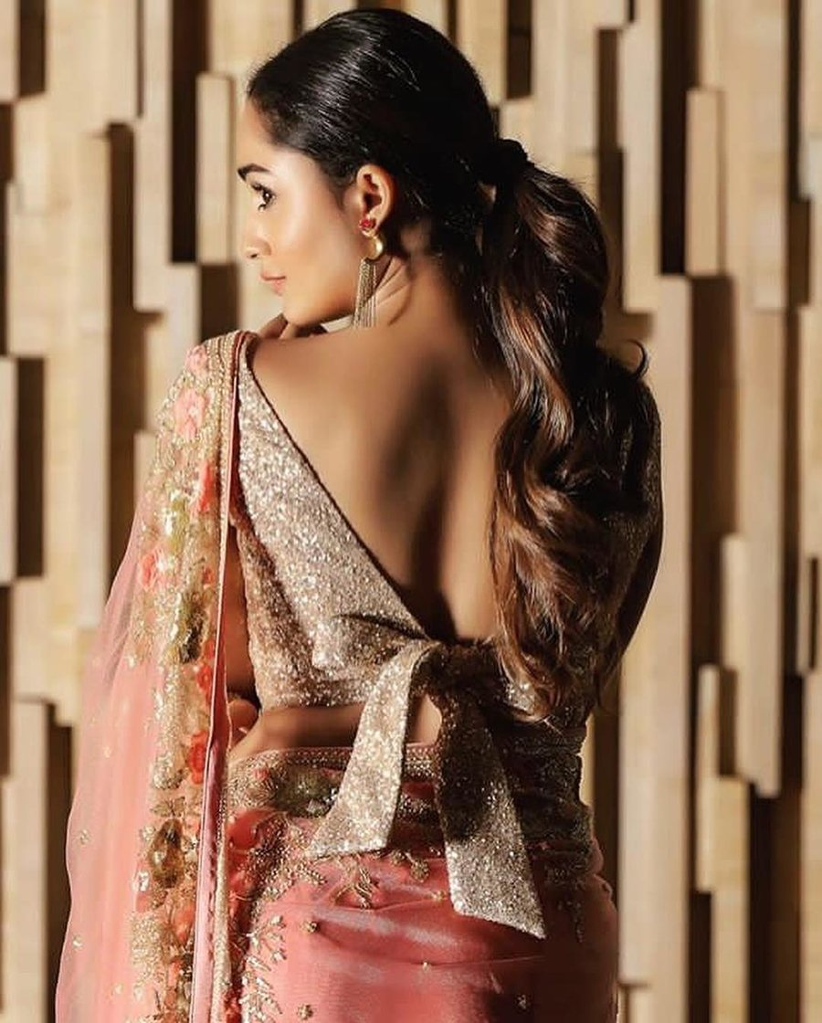PunjabKesari,Stylish backless blouse design image, स्टाइलिश बैकलेस ब्लाउज डिजाइन इमेज