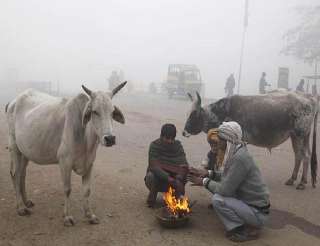 PunjabKesari, Madhya Pardesh Hindi News, Bhopal Hindi News, Bhopal Hindi Samachar, Weather Report, Cold wind, Weather department